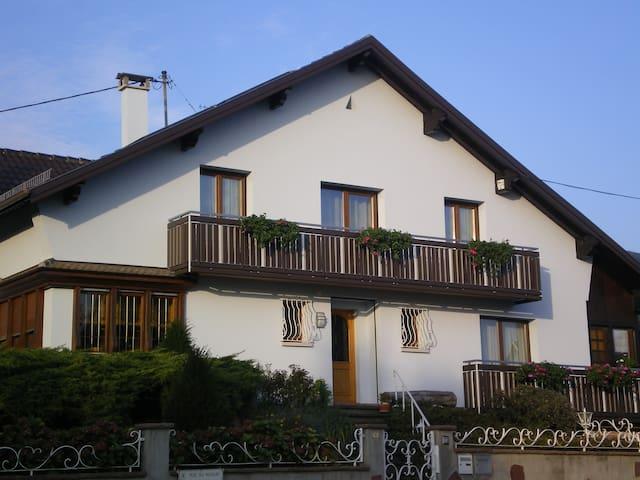 Gènemarie - Pfaffenheim - Pis