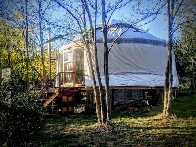 Yurta Can laberint
