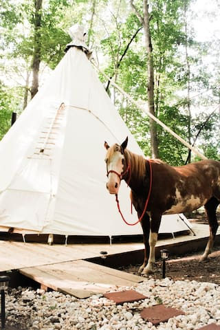 Upscale Camping in Authentic Tipi - Spirit Lodge