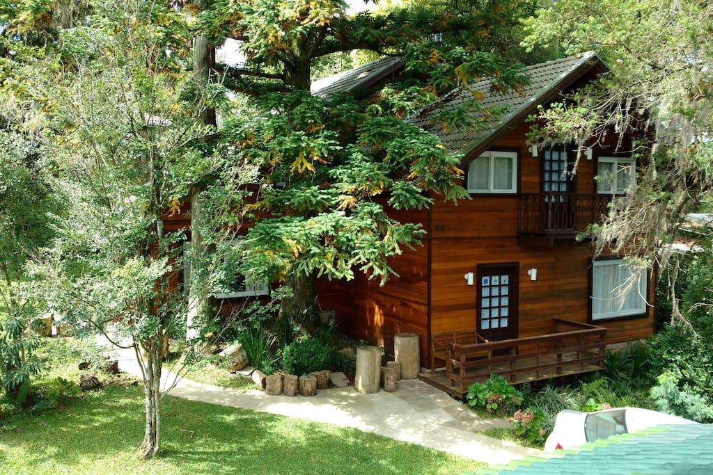 Casa no meio das árvores