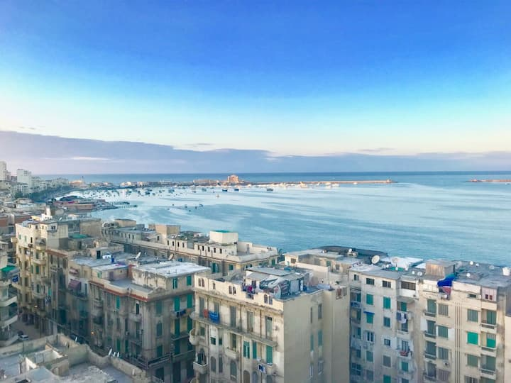 Seaview apt in the heart of Alex (4)