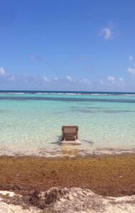 Studio pleno centro!200m dela playa - Playa del Carmen - Apartamento
