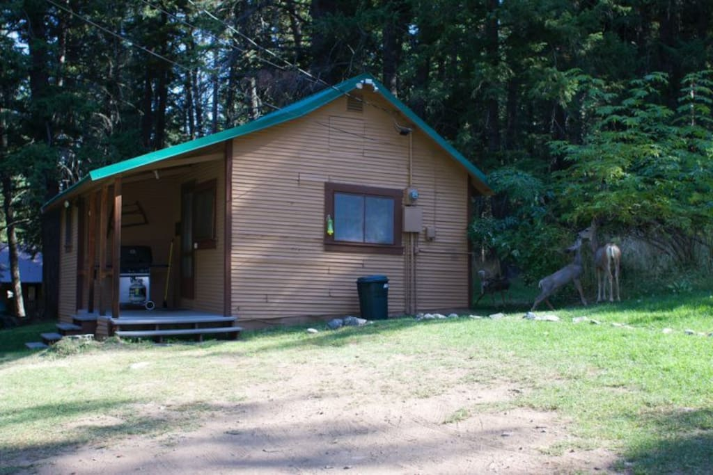 27 Pine Bluff Cottage Cabins For Rent In Joseph