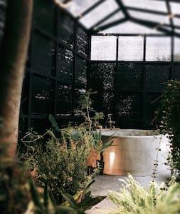 Hot spring bath in jungle 林子裡泡湯
