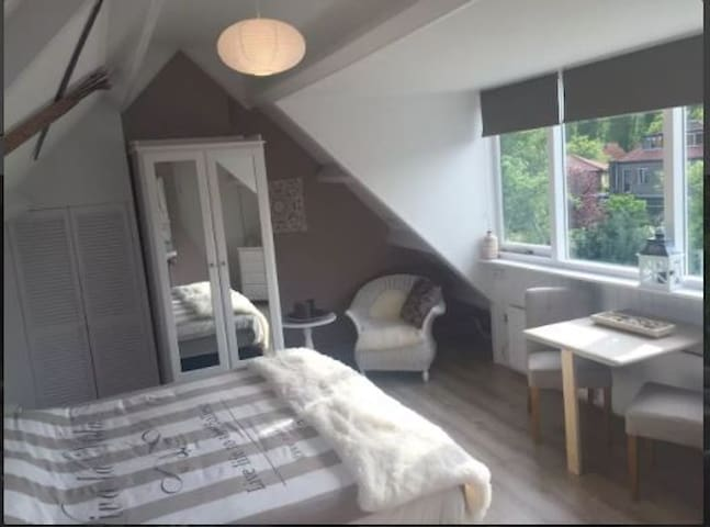 Room near beach, Amsterdam & Haarlem center