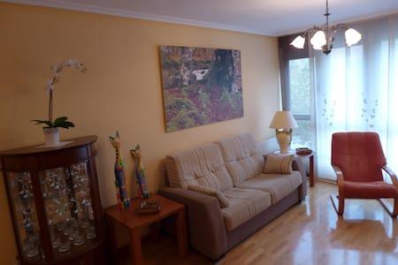 Coqueto y agradable  apartamento - Apartment
