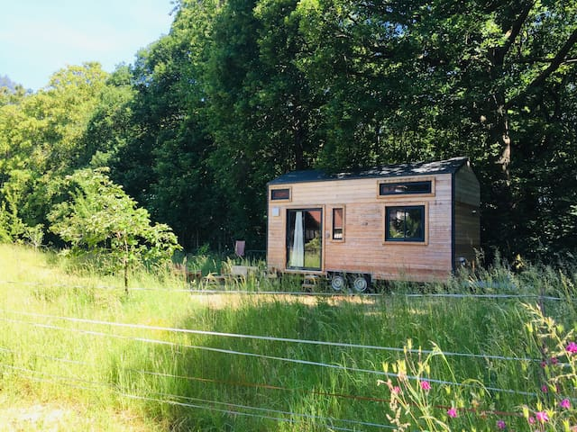 Mignonne Tiny House en lisière de forêt