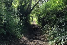Beautiful country footpaths on the doorstep