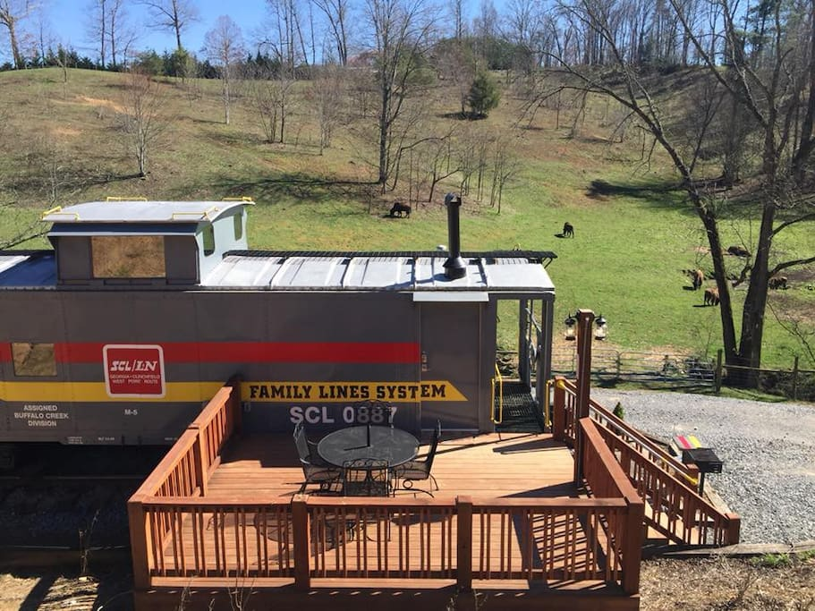 The back deck & the view of the bison herd in front pasture!
