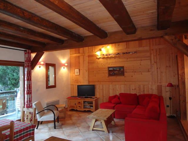 Grand appartement (8 pers) cosy, idéalement situé