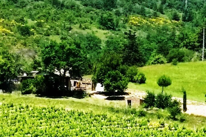 Cabanon de vigneron en Drôme provençale