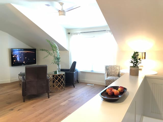 Downtown Luxury Apartment Minutes from Home Office