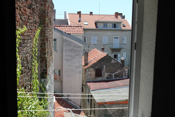 Old roof view