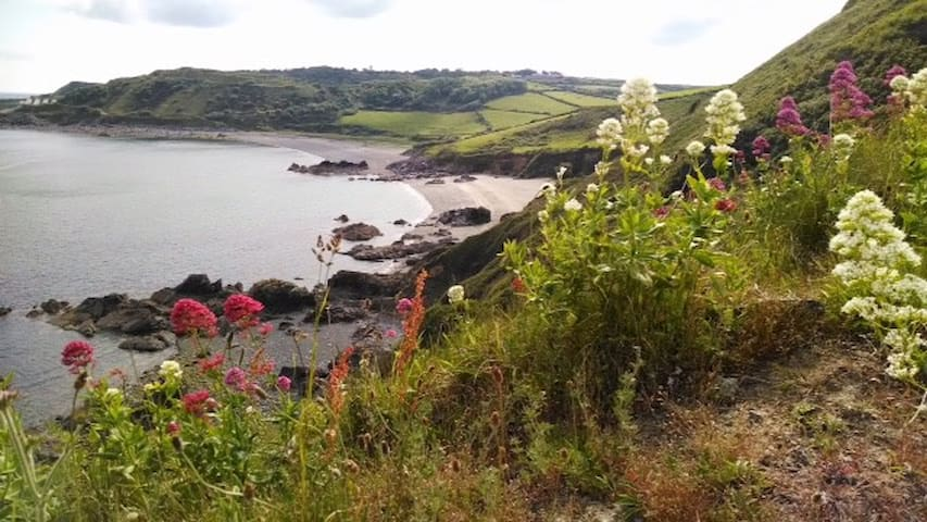 A walker's paradise on the Lizard Peninsula.