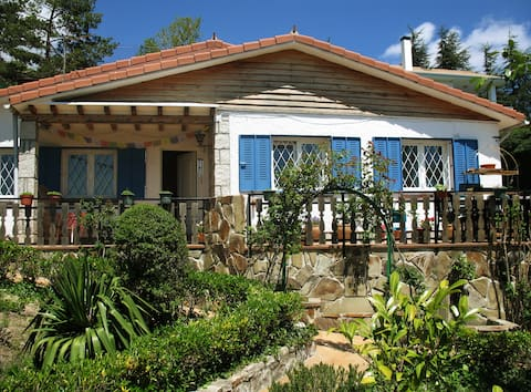 Charming cottage with private pool near Madrid
