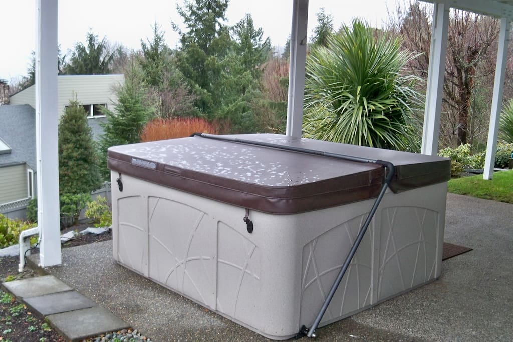 Hot tub with a relaxing view of the Olympic Mts