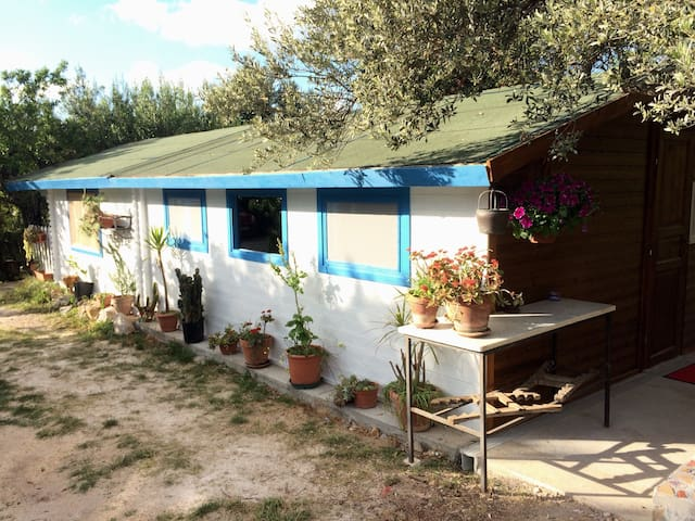 Small house in Terrasini-Cinisi - Cinisi - Ev