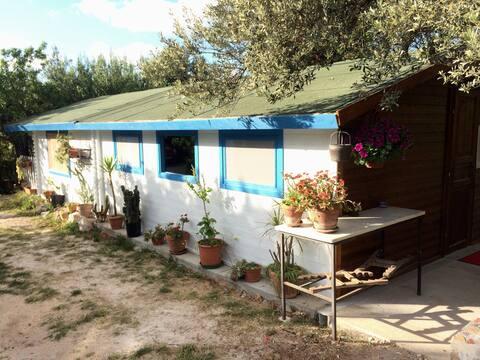Small house in Terrasini-Cinisi