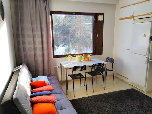 A spacious apartment in Joensuu city