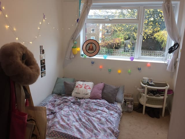 Comfortable Room in Welcoming Home in London