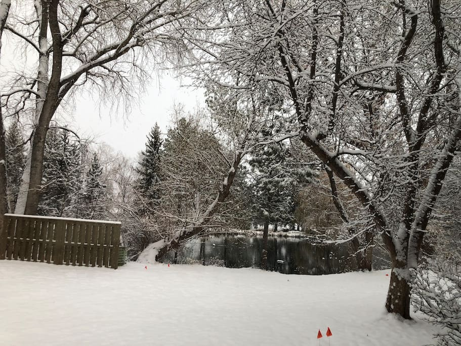 Recent snowfall (Veteran's Day, 11/11) showing the beautiful Pond view. This is from kitchen window, and guest room faces the same direction. How peaceful and serene this is on a chilly morning.