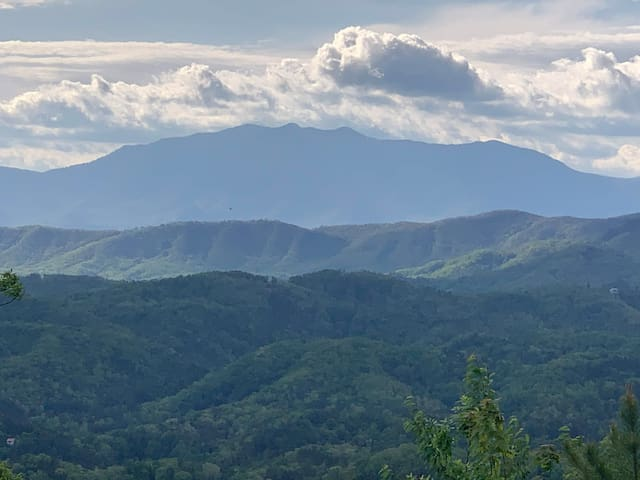 180° views of Mt. Leconte by day/Parkway at night