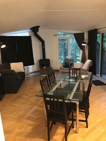 Living-room de soir avec intimité et éclairage. Divan-lit gris pour 2 personnes. Mini-frigo.