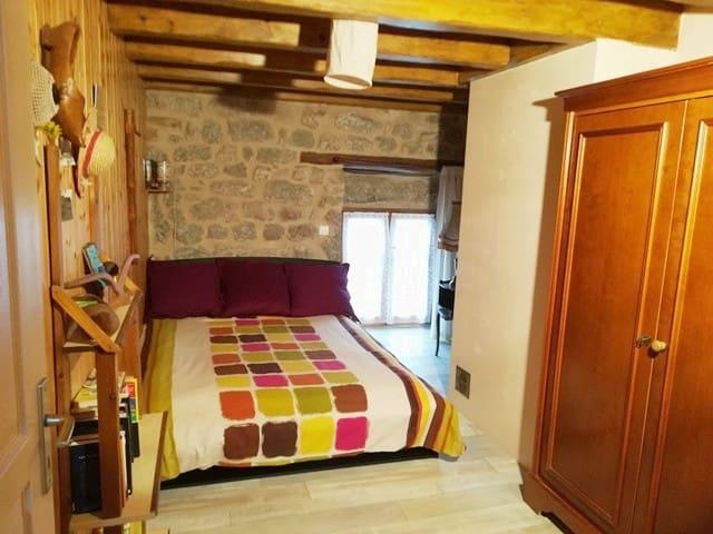 Maison chaleureuse typique Lozérienne en pierres