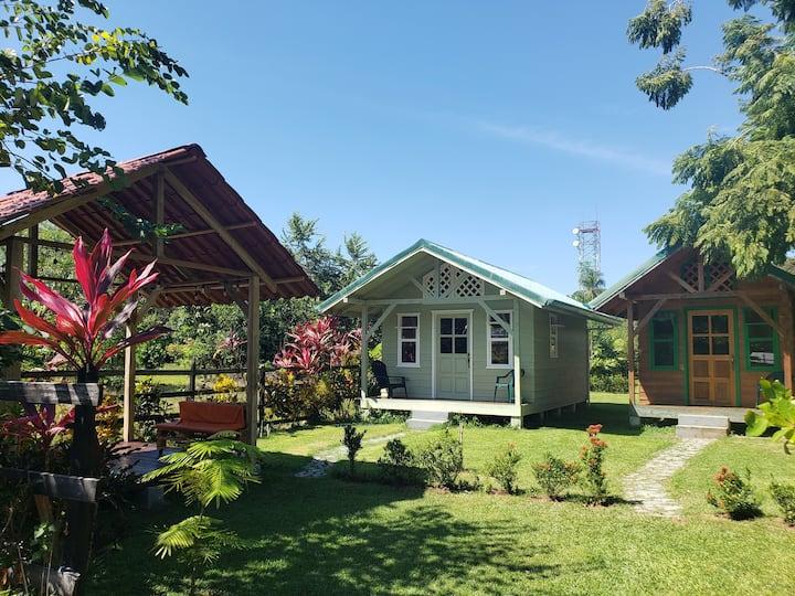 Casa Jacaranda Matapalo