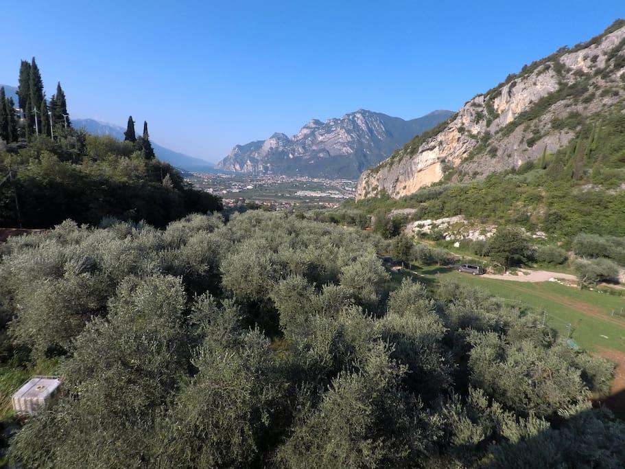 View from the apartment on the lake Garda - Vista dall'appartamento sul lago di Garda