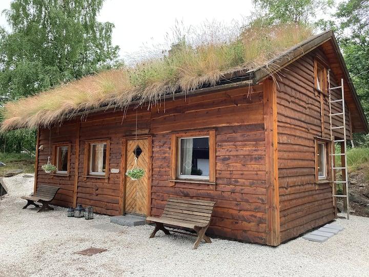 Koselig hytte 15 min fra Kristiansand sentrum