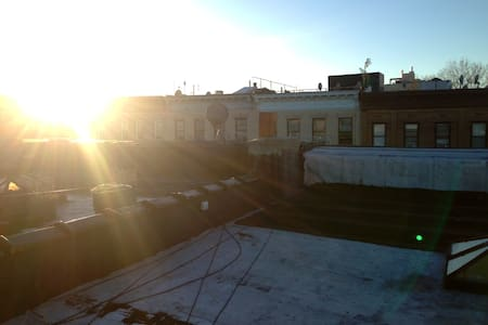Heart of Crown Heights, Rooftop - Brooklyn - Apartment