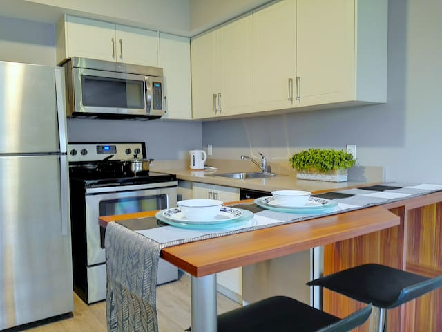 New Stylish Condo by Walking Distance to Campus