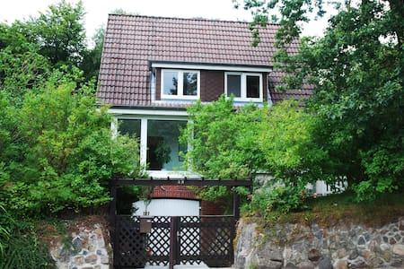 Gemütliche Wohnung in Heide - Heide