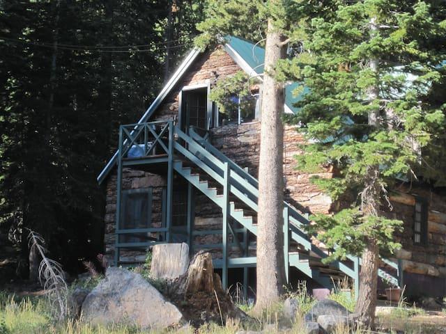 Very Vintage Cabin Old Mammoth - Mammoth Lakes - Houten huisje
