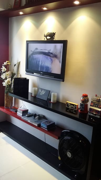 Wall Mounted TV, with DVD player