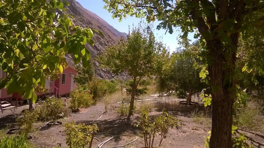 Lodge Valle Elqui (cochiguaz)