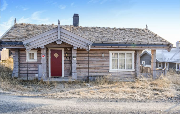 Holiday cottage with 3 bedrooms on 60m² in Sjusjøen