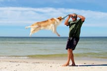 Regularly Voted Best Pet Friendly Beach in America