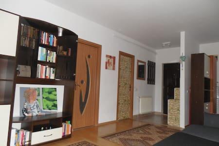 Cozy apartment close to Vivo Mall - Florești - 公寓
