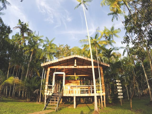 Ecolodge in the Brazilian Amazon - Full Package