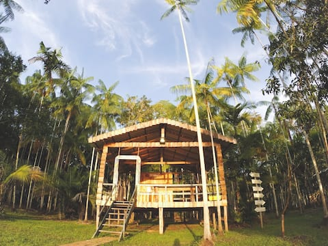 Ecolodge in the Brazilian Amazon - Near Manaus