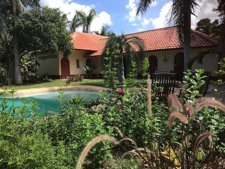 Gezellige kamer met uitzicht op tropische tuin.