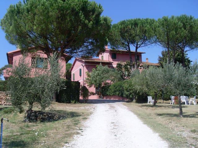 Casolare casa vacanze - Fauglia