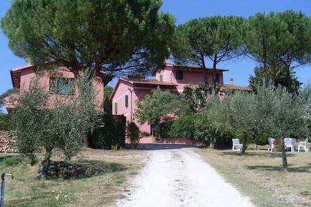 Casolare casa vacanze - Fauglia - Haus