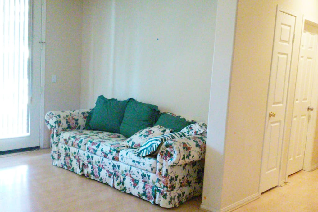 Sofa Bed in our Entertainment Room