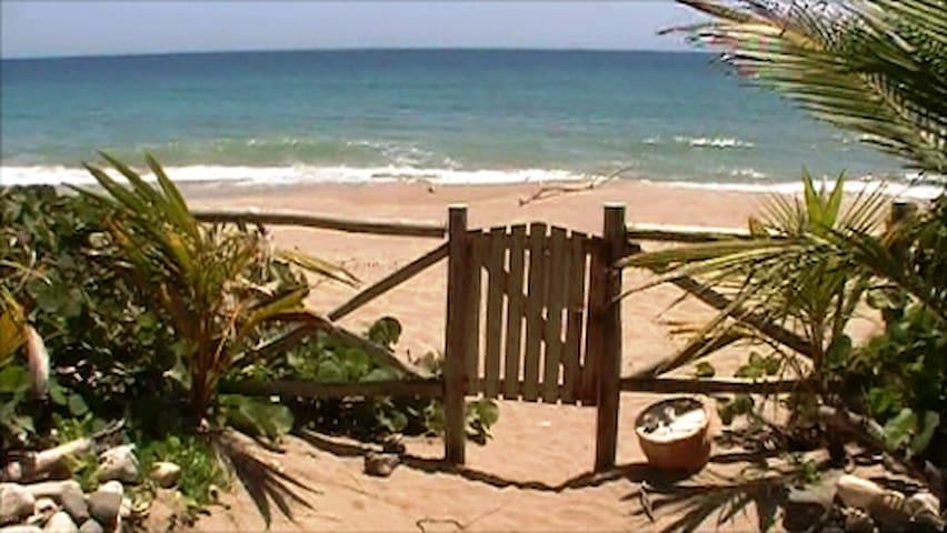 Caribbean Dream Hideaway Romantic Settings - Cabarete - Lägenhet