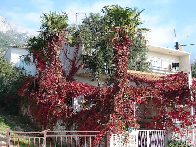 Apartment Goge A1(4+1) Gradac, Riviera Makarska