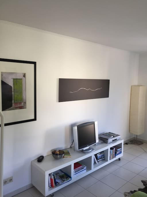Living room area with DVD set
