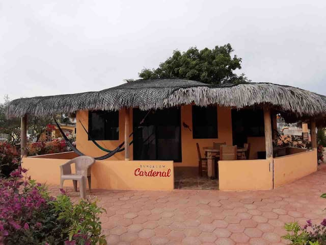 Bungalow Cardenal for 4 persons